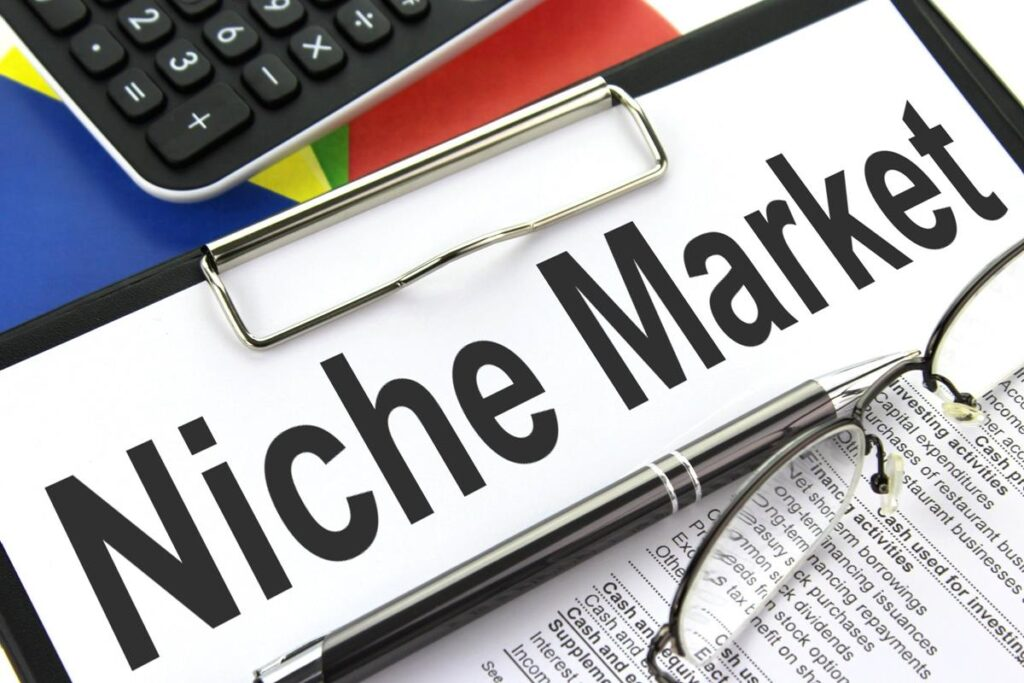 Leverage a Niche Market To Make Money On YouTube